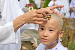 Little girl be removed hair to become a nun during a Buddhist o Royalty Free Stock Images