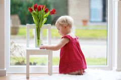 Little girl with beautiful tulips Stock Image