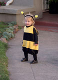 Little girl bee costume2 Stock Photo