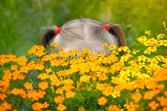 Little girl behind the flowers Royalty Free Stock Image