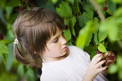 Little girl with berries Royalty Free Stock Photos