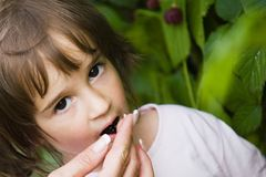 Little girl with berries Royalty Free Stock Photography