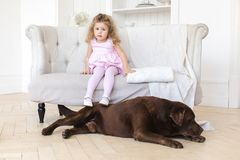 Little girl and big dog. Adorable little girl on sofa and huge dog lying near at home Royalty Free Stock Photos
