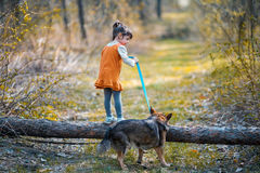 Little girl with a big dog climbs over a log Royalty Free Stock Photography