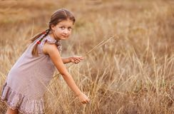 Little girl with big eyes on a wheat field collecting herbs bouquet royalty free stock images