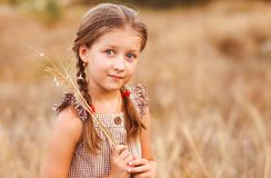 Little girl with big eyes on a wheat field holding herbs bouquet stock photos