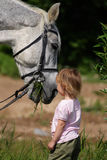 Little girl and big horse's head eating grass. Little girl make an attempt to establish communication with big grey horse. Animal eat grass ang child see stock photo