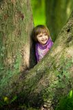 Little girl on big tree Stock Photography