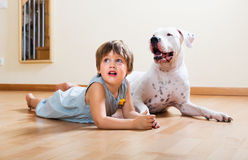Little girl with big white dog Royalty Free Stock Image