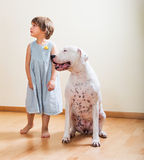 Little girl with big white dog stock image