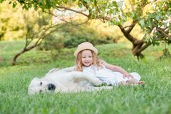 Little girl with a big white dog in the park. A beautiful 5 year old girl in white dress hugs her favorite dog during a summer wal. K stock photo