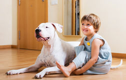 Little girl with big white dog Royalty Free Stock Images