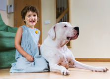 Little girl with big white dog Stock Photo