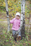 Little girl in the birch forest. Royalty Free Stock Photography