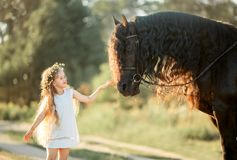 Little girl with black friesian stallion royalty free stock photos
