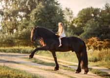 Little girl with black friesian stallion stock photos
