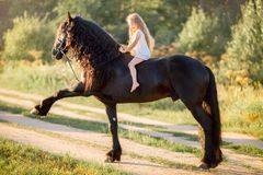Little girl with black friesian stallion royalty free stock photography