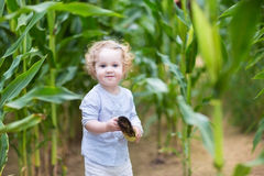 Little girl with blond curly hair running in corn field Stock Photo