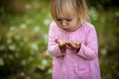A little girl with blond hair in a light-colored dress on the field blowing on dandelion seeds and place under the text stock photo