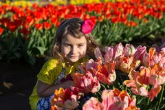 Little girl at blooming tulip fields Royalty Free Stock Photography