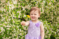 Little girl with blossoming bush and dandelion Stock Photo