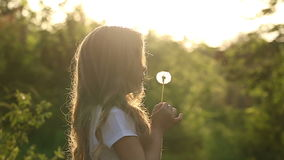 Little girl blow a dandelion. Little cute girl blow a dandelion. Rest at nature. Slow motion stock video footage