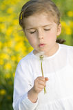 Little girl blowing dandelion Royalty Free Stock Photography