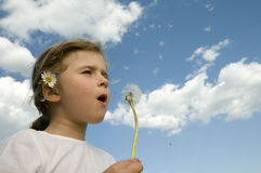 Little girl blowing dandelion Stock Photos