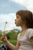 Little girl blowing dandelion Stock Photo