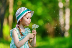 Little girl blowing dandelion Royalty Free Stock Image
