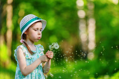Little girl blowing dandelion Stock Photography