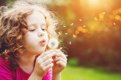 Little girl blowing dandelion. Royalty Free Stock Photo