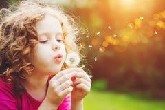 Little girl blowing dandelion. Little curly girl blowing dandelion royalty free stock photo