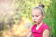 Little girl blowing a dandelion. Cute blond little girl blowing a dandelion Royalty Free Stock Photo