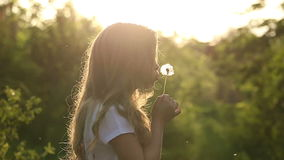 Little girl is blowing a dandelion. Little cute girl is blowing a dandelion. Rest at nature. Slow motion stock footage