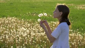 Little girl blowing dandelion while relaxing in the park. Flying seeds catkins particle springtime. concept Start a New Life and r. Beauty little girl blowing stock video footage