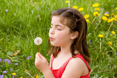 Little Girl Blowing Dandelion Seeds Royalty Free Stock Photos