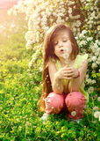 Little girl blowing dandelion seeds Stock Photo