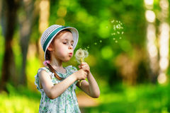 Little girl blowing dandelion Stock Images
