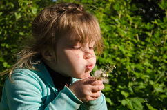 Little girl blowing a dandelion on sunny day Stock Photo