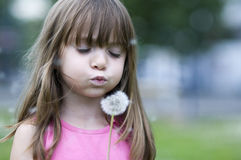 Little girl blowing flower blossom Stock Image