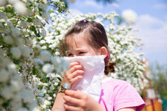 Little girl is blowing her nose. Pollen allergy Stock Photography