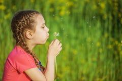 Little girl blowing ondandelion Stock Image