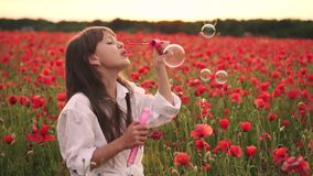 Little girl blowing soap bubbles in blooming field of red poppies at sunset, slow motion stock footage