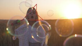 Little girl blowing soap bubbles in wheat field at sunset time. Slow motion video.