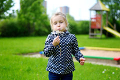 Little girl blowing on white dandelion. At spring Stock Photography
