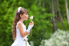 Little girl blows away dandelion Royalty Free Stock Photo