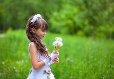 Little girl blows away dandelion Royalty Free Stock Photo