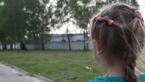 A little girl blows away dandelion. Young child girl blowing away dandelion outdoor,view from the back stock footage