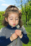 Little girl blows on dandelion Royalty Free Stock Photos